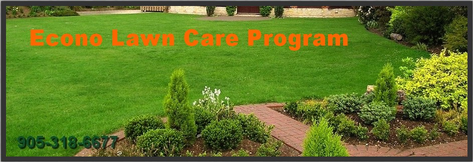 Econo lawn care program by Turf King